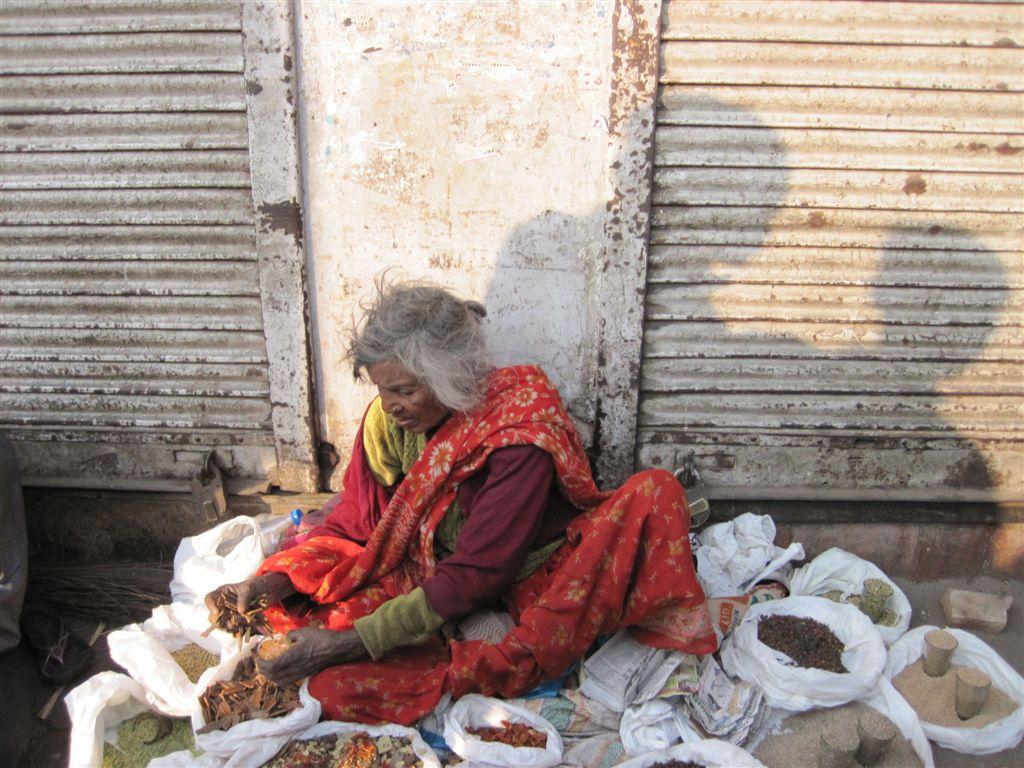 Wiedersehen in Neu-Dehli (Delhi)