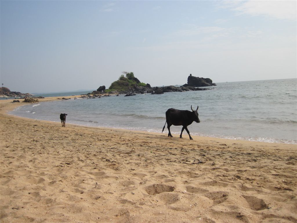 Om-Beach – Gokarna (Karnataka)