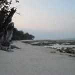Ebbe - Beach No. 1