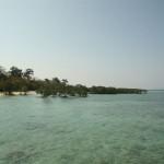 Mangroven - Jetty-Beach